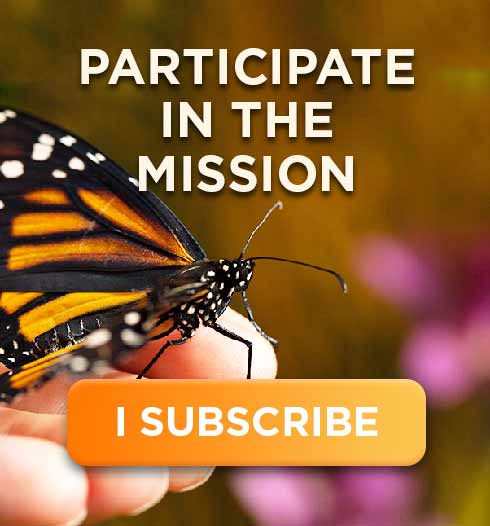 Participate in the Mission